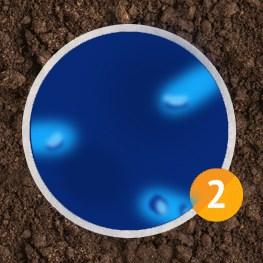 bakteria_end